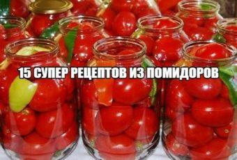 15 СУПЕР РЕЦЕПТОВ ИЗ ПОМИДОРОВ