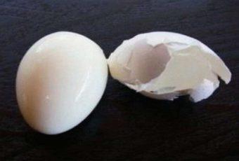 Как сварить яйца, чтобы скорлупа с них буквально слетала: поможет обычная канцелярская кнопка