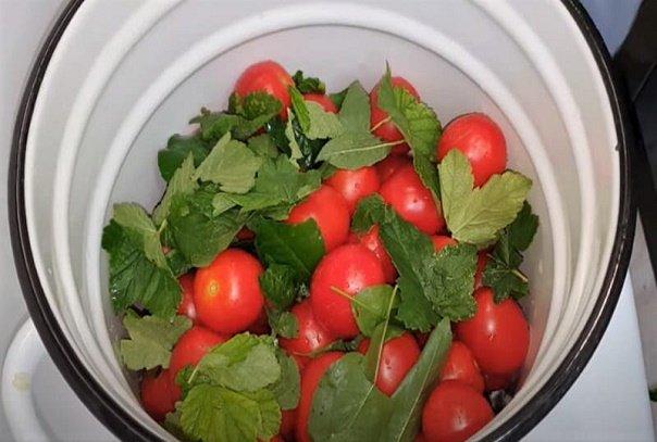 Как засолить помидоры в кастрюле (ведре) на зиму как бочковые