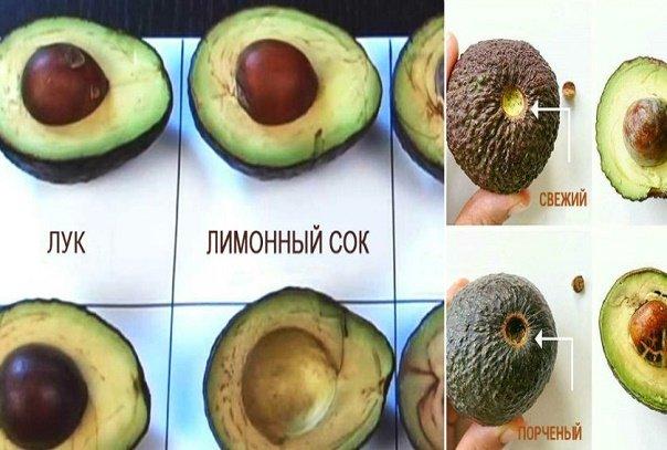 Продукт, который заменил мне мясо, рыбу и салат! Как правильно есть и хранить авокадо